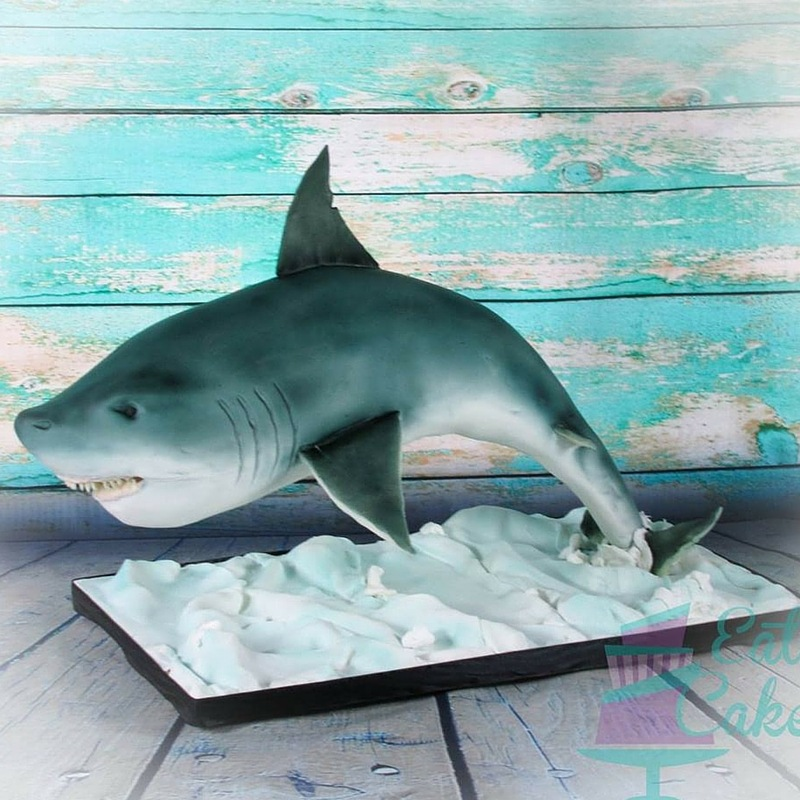 Shark Shaped Fish Cake by Eat Cake