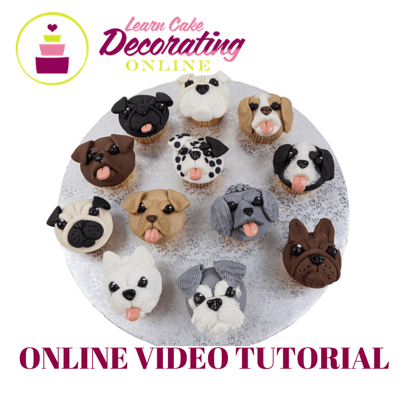 Molly Robbins Pupcakes Tutorial for Cakerschool